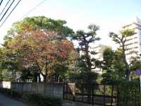 養福寺の庭園