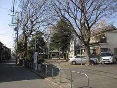 大川町氷川神社参道