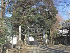 諏方神社鳥居