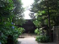 願行寺本堂