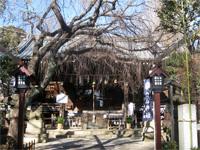 白山神社社殿