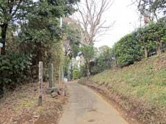 足尾山神社参道