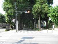 本土寺参道