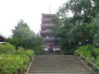 本土寺五重塔