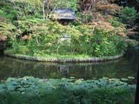 本土寺弁天堂