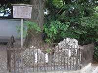 山王日枝神社さざれ石