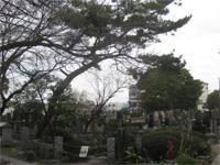 明福寺鏡が池とけさ掛けの松