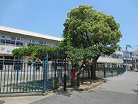 妙覚寺一之江保育園