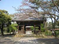 大雲寺山門