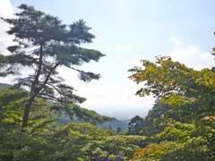 大山寺よりの景色