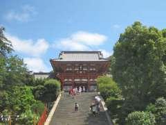 鶴岡八幡宮社殿