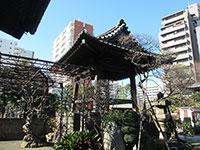 教安寺鐘楼
