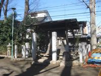 上丸子日枝神社神木
