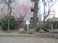 住吉神社力石