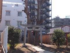 保谷稲荷神社鳥居