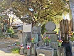 宝持院にある松浦河内守信正墓碑