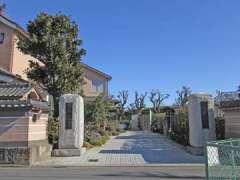 真禅寺山門