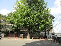 法善寺保育園
