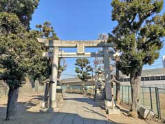 赤羽八幡神社鳥居