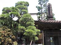 常林寺本堂