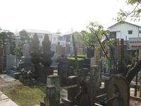 成願寺鍋島家の墓