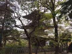 道場寺三重塔