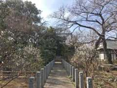 観蔵院本堂