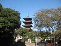 池上本門寺五重塔