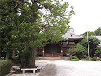安祥寺本堂