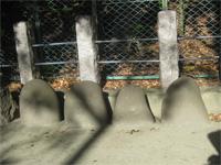 新田神社の力石
