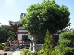 本仙寺本堂