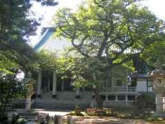 東圓寺本堂