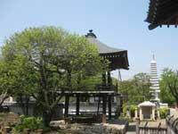 瀧泉寺鐘楼