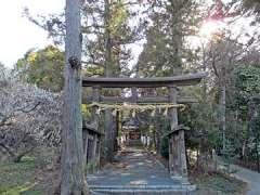 八幡神社(三ケ尻)鳥居