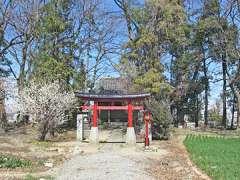 湯殿大神社(奈良新田)鳥居