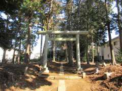 掘の内神明神社鳥居