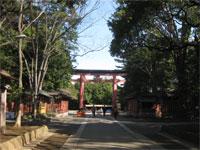 氷川神社鳥居
