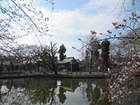 岩崎弁財天溜池