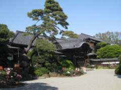 豪徳寺書院