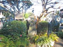 専光寺喜田川歌麿の墓