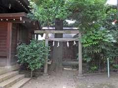 月見岡八幡神社浅間神社