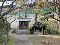 隅田川神社拝殿の龍