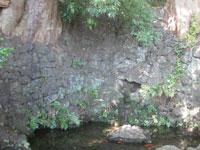 滝神社の瀧水