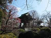 泉蔵院鐘楼
