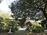 養樹院本堂