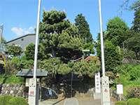 つくし野杉山神社鳥居