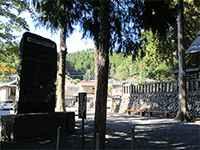昭和天皇お手植の木
