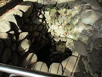 拝島大日堂おねいの井戸