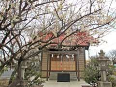 加藤神社社殿