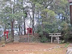 境内社機神社と権現山稲荷神社
